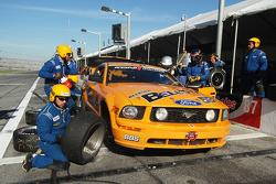 #59 Rehagen Racing Ford Mustang GT: Dean Martin, Larry Rehagen
