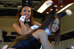 Las chicas del equipo LCR Honda MotoGP Playboy encantador