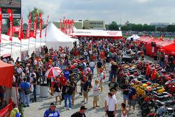 Zona de Ducati fan