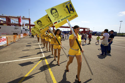 Grid girls head to the starting grid
