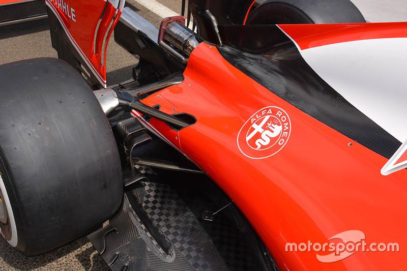 Ferrari rear cover detail