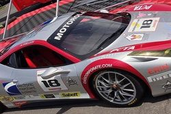 JIm Weiland's Ferrari Showing Support For PETA