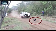 Incredibly lucky puppy dodges speeding rally car by mere inches