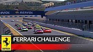 Ferrari Challenge Europe - Jerez 2016 - Coppa Shell - 2. Yarış