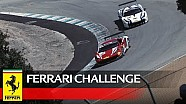 Ferrari Challenge – 488 Challenge, In-Depth