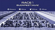 10th race of the 2017 season at the Hungaroring