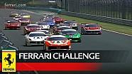 Ferrari Challenge Europe - Trofeo Pirelli Race 2 at Budapest