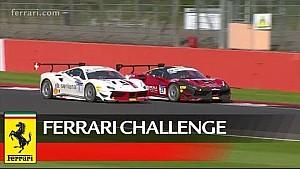 Ferrari Challenge Europe - Silverstone 2017, Trofeo Pirelli race 1